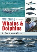 Watching Whales &amp; Dolphins in Southern Africa