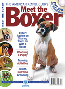 Meet the Boxer
