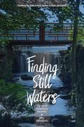 Finding Still Waters