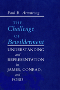 The Challenge of Bewilderment