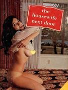 The Housewife Next Door (Vintage Erotic Novel)