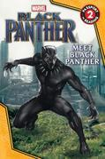 MARVEL's Black Panther: Meet Black Panther