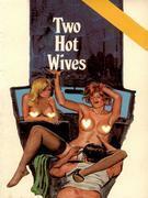 Two Hot Wives (Vintage Erotic Novel)