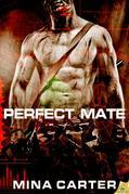 Mina Carter - Perfect Mate