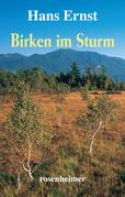 Birken im Sturm