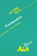 Frankenstein von Mary Shelley (Lektürehilfe)