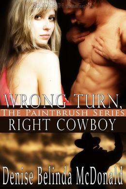 Wrong Turn, Right Cowboy