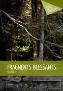Fragments blessants