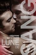 Lune de sang - Tome 2 | Roman gay, livre gay