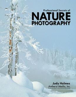 Professional Secrets of Nature Photography: Essential Skills for Photographing the Outdoors