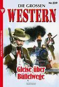 Die großen Western 239
