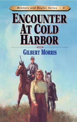 Encounter at Cold Harbor