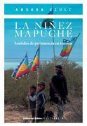 La niñez mapuche
