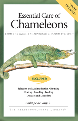Essential Care of Chameleons