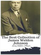 The Best Collection of James Weldon Johnson
