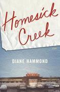Homesick Creek: A Novel