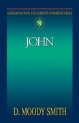 Abingdon New Testament Commentaries | John
