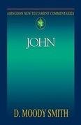 Abingdon New Testament Commentaries: John