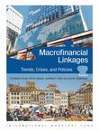 Macrofinancial Linkages: Trends, Crises, and Policies