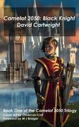 Camelot 2050