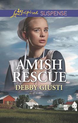 Amish Rescue (Mills & Boon Love Inspired Suspense) (Amish Protectors)