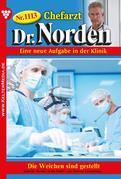 Chefarzt Dr. Norden 1113 - Arztroman