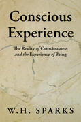 Conscious Experience
