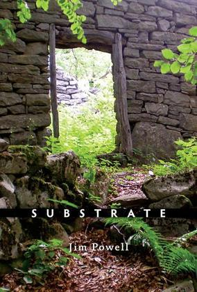 Substrate: Poems