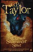 Shadowmancer: The Curse of Salamander Street