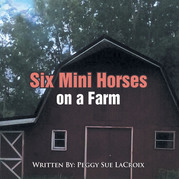 Six Mini Horses on a Farm