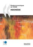 Études économiques de l'OCDE : Indonésie 2010