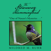 The Stowaway Hummingbird