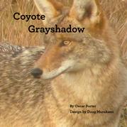 Coyote Grayshadow