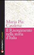 Il Risorgimento nella storia d'Italia