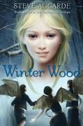 Winter Wood: Book 3 in the Touchstone Trilogy