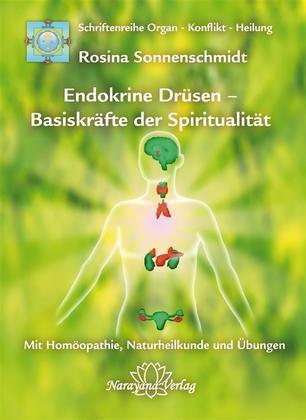 Endokrine Drüsen - Basiskräfte der Spiritualität