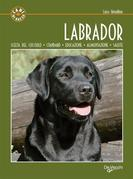 Labrador