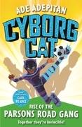 Ade's Amazing Ade-ventures: Battle of the Cyborg Cat