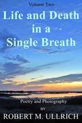 Life and Death in a Single Breath - Volume 2