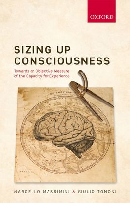 Sizing up Consciousness