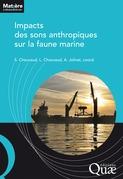 Impacts des sons anthropiques sur la faune marine