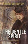 The Gentle Spirit