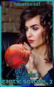 Danica's Erotic Sorcery 2