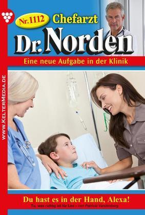 Chefarzt Dr. Norden 1112 - Arztroman