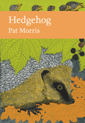 Hedgehog (Collins New Naturalist Library, Book 137)