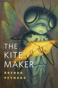 The Kite Maker