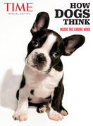 TIME How Dogs Think