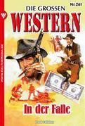 Die großen Western 261