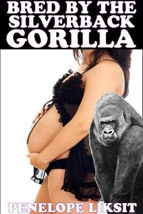 Bred By The Silverback Gorilla