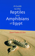 A Guide to Reptiles & Amphibians of Egypt